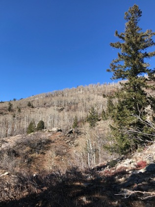 Hike Uranium Mine Trail Aspen Grove Steamboat Springs CO